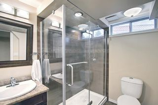 Photo 43: 117 Hawkford Court NW in Calgary: Hawkwood Detached for sale : MLS®# A1103676