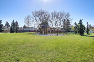 Photo 31: 3508 Fonda Way SE in Calgary: Forest Heights Detached for sale : MLS®# A1108307