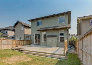 Photo 42: 1550 New Brighton Drive SE in Calgary: New Brighton Detached for sale : MLS®# A1133422