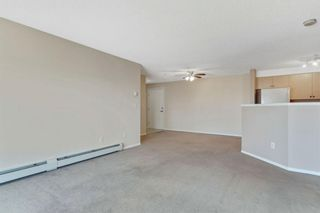 Photo 12: 328 1717 60 Street SE in Calgary: Red Carpet Apartment for sale : MLS®# A1090437
