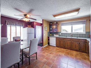 Photo 11: 223 Tanner Drive SE: Airdrie Detached for sale : MLS®# A1101335