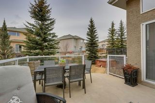 Photo 44: 70 ROYAL CREST Way NW in Calgary: Royal Oak Detached for sale : MLS®# C4237802