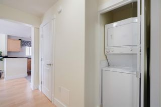 Photo 15: 312 1029 14 Avenue SW in Calgary: Beltline Apartment for sale : MLS®# A1148172