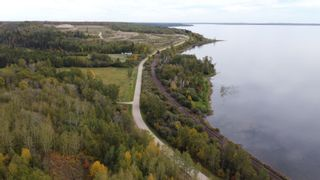 Photo 21: Hwy 11 & RR 53: Rural Parkland County Rural Land/Vacant Lot for sale : MLS®# E4265869