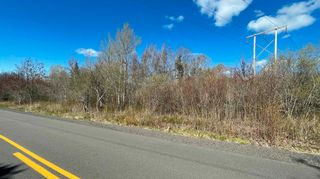 Photo 7: Lot Crisp Road in South Williamston: 400-Annapolis County Vacant Land for sale (Annapolis Valley)  : MLS®# 202115469