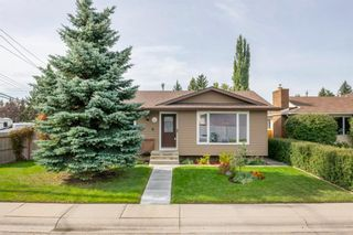 Main Photo: 131 Queensland Circle SE in Calgary: Queensland Detached for sale : MLS®# A1148253