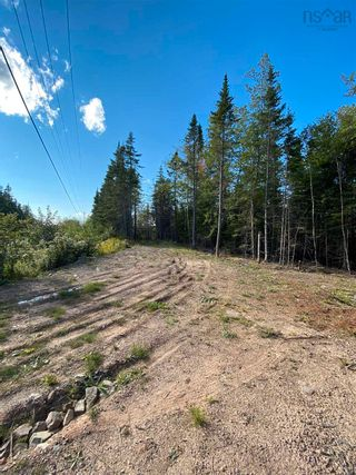 Photo 1: Lot Highway 4 False Bay Brook in River Bourgeois: 305-Richmond County / St. Peters & Area Vacant Land for sale (Highland Region)  : MLS®# 202123291