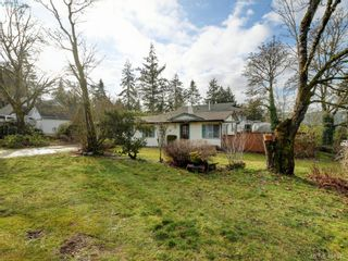 Photo 16: 983 Marchant Rd in BRENTWOOD BAY: CS Brentwood Bay House for sale (Central Saanich)  : MLS®# 804617