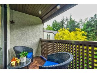 """Photo 36: 402 340 GINGER Drive in New Westminster: Fraserview NW Condo for sale in """"FRASER MEWS"""" : MLS®# R2599521"""