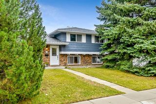 Photo 37: 324 Parkland Way SE in Calgary: Parkland Detached for sale : MLS®# A1146379