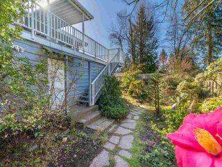 Photo 33: 11020 LAWRIE Crescent in Delta: Sunshine Hills Woods House for sale (N. Delta)  : MLS®# R2561098