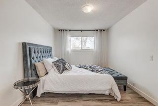 Photo 19: 216 Pinecrest Crescent NE in Calgary: Pineridge Detached for sale : MLS®# A1098959