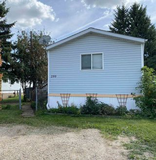 Photo 24: 250 305 Calahoo Road: Spruce Grove Mobile for sale : MLS®# E4262768