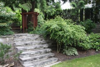 Photo 37: 2588 Birch Street in Abbotsford: Abbotsford East House for sale : MLS®# R2481340