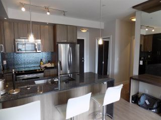 """Photo 4: C325 20211 66 Avenue in Langley: Willoughby Heights Condo for sale in """"ELEMENTS"""" : MLS®# R2273080"""