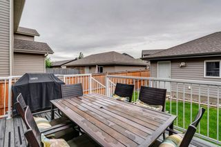 Photo 41: 217 CHAPARRAL VALLEY Drive SE in Calgary: Chaparral Semi Detached for sale : MLS®# A1119212