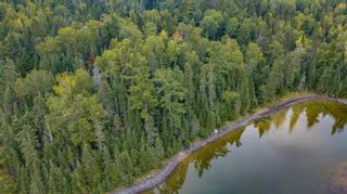 Photo 7: Lot 24 Five Point Island in South of Kenora: Vacant Land for sale : MLS®# TB212088
