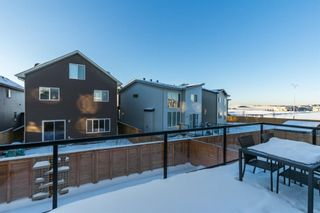 Photo 31: 34 Carringvue Drive NW in Calgary: Carrington Detached for sale : MLS®# A1056953