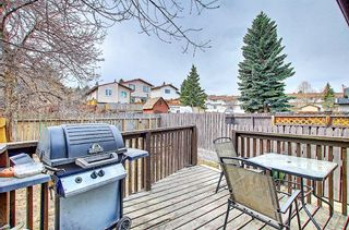 Photo 36: 1137 Berkley Drive NW in Calgary: Beddington Heights Semi Detached for sale : MLS®# A1136717