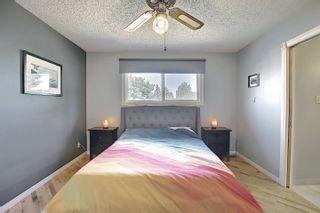 Photo 28: 9832 187 Street in Edmonton: Zone 20 House for sale : MLS®# E4253744