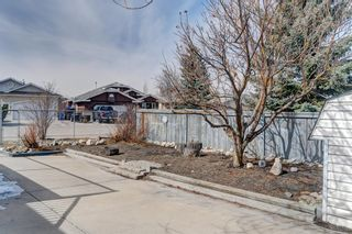 Photo 46: 1 West Boothby Crescent: Cochrane Detached for sale : MLS®# A1090336