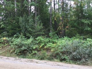 Photo 1: Lot 9 Mountain Drive in Anglemont: North Shuswap Land Only for sale (Shuswap)  : MLS®# 10158352
