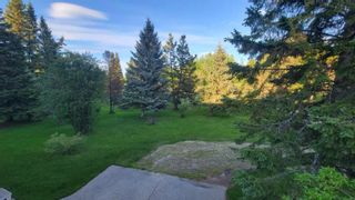 Photo 27: 53132 RGE RD 33: Rural Parkland County House for sale : MLS®# E4247193