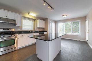 Photo 21: 1 Oakdale Place: St. Albert House for sale : MLS®# E4264071