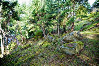 Photo 29: 277 LAURA POINT Road: Mayne Island Land for sale (Islands-Van. & Gulf)  : MLS®# R2554109