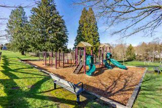 Photo 25: 1266 SPRINGER Avenue in Burnaby: Brentwood Park House for sale (Burnaby North)  : MLS®# R2535603