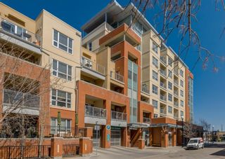 Photo 50: 203 1110 3 Avenue NW in Calgary: Hillhurst Apartment for sale : MLS®# A1098153