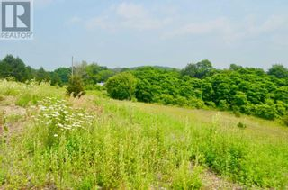 Photo 7: 0 TELEPHONE RD in Brighton: Vacant Land for sale : MLS®# X5287568