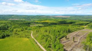 Photo 4: 13934 PACKHAM FRONTAGE Road: Charlie Lake Agri-Business for sale (Fort St. John (Zone 60))  : MLS®# C8039465