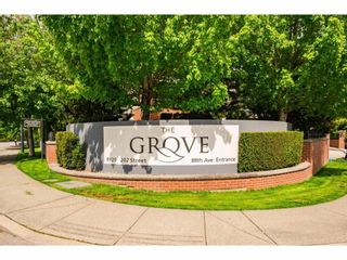 """Photo 4: B311 8929 202 Street in Langley: Walnut Grove Condo for sale in """"THE GROVE"""" : MLS®# R2578614"""