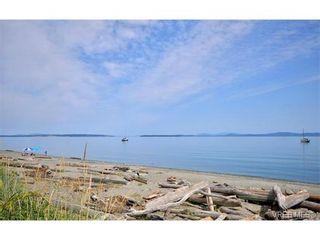 Photo 18: 5218 Cordova Bay Rd in VICTORIA: SE Cordova Bay House for sale (Saanich East)  : MLS®# 735348