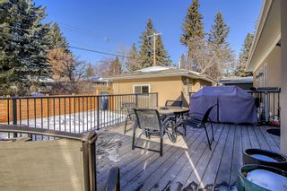 Photo 42: 6407 20 Street SW in Calgary: North Glenmore Park Detached for sale : MLS®# A1072190