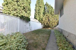 Photo 38: 16608 93 Avenue in Edmonton: Zone 22 House for sale : MLS®# E4259363