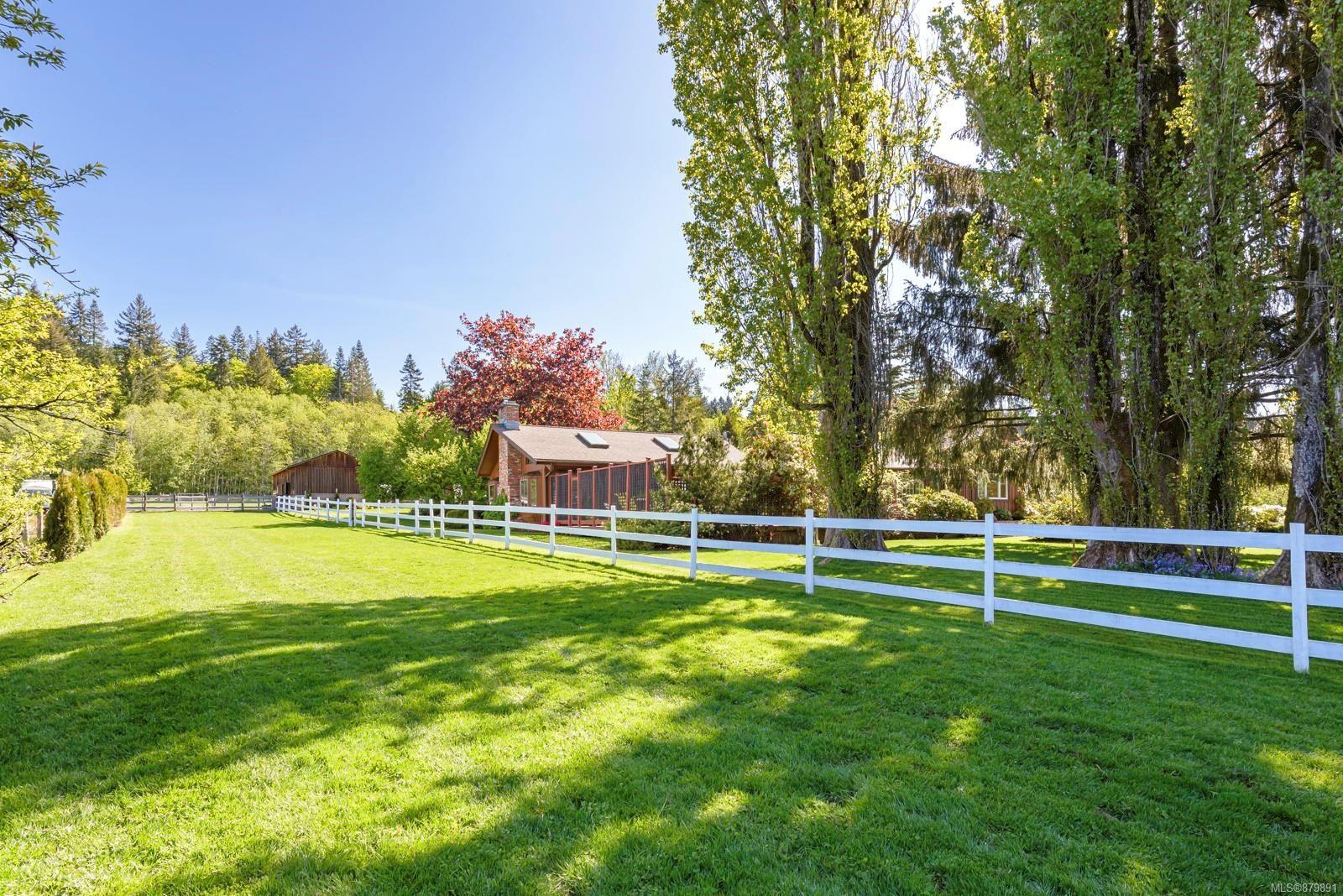 Photo 38: Photos: Vancouver Island Horse Property