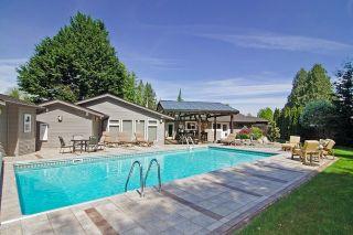 Photo 18: 20288 124 Avenue in Maple Ridge: Northwest Maple Ridge House for sale : MLS®# R2060570