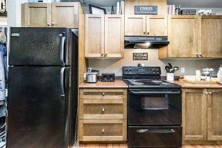 """Photo 5: 228 13277 108 Avenue in Surrey: Whalley Condo for sale in """"PACIFICA"""" (North Surrey)  : MLS®# R2245436"""