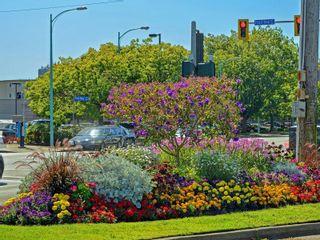Photo 43: 2024 Newton St in : OB Henderson House for sale (Oak Bay)  : MLS®# 870494