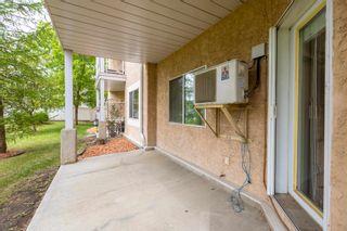 Photo 18: 120 17459 98A Avenue in Edmonton: Zone 20 Condo for sale : MLS®# E4248915