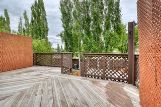 Photo 47: 143 Chapman Way SE in Calgary: Chaparral Detached for sale : MLS®# A1116023