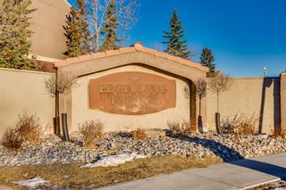 Photo 22: 12 3212 Edenwold Heights NW in Calgary: Edgemont Apartment for sale : MLS®# A1073287