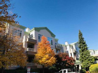 """Photo 36: 118 8775 JONES Road in Richmond: Brighouse South Condo for sale in """"REGENT'S GATE"""" : MLS®# R2461493"""