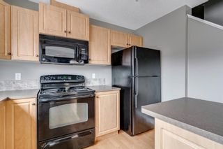 Photo 16: 217 CHAPARRAL VALLEY Drive SE in Calgary: Chaparral Semi Detached for sale : MLS®# A1119212