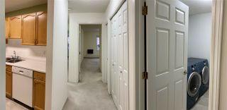 Photo 9: 203 17511 98A Avenue in Edmonton: Zone 20 Condo for sale : MLS®# E4224086