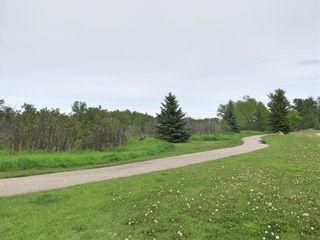 Photo 36: 36 Hunters Crescent: Okotoks Detached for sale : MLS®# C4300451