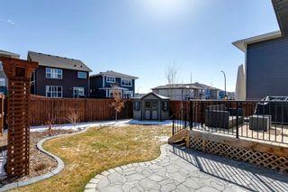 Photo 37: 133 Cranbrook Crescent SE in Calgary: Cranston Detached for sale : MLS®# A1088402