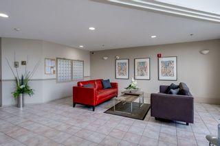 Photo 26: 220 10508 119 Street in Edmonton: Zone 08 Condo for sale : MLS®# E4254445
